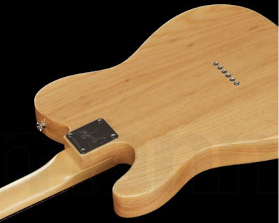 Fender Jimmy Page Telecaster RW NAT