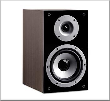 T 300 Regal-Lautsprecher